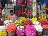 Malleshwaram - Offers, Images, Videos, Links